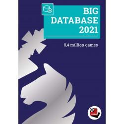 نرم افزار big database 2021